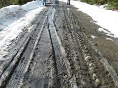 mud season walk on Easter (Custom).JPG