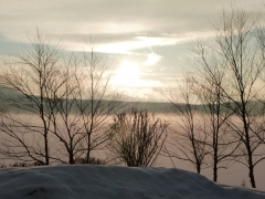 January morning by Candy Moot.JPG